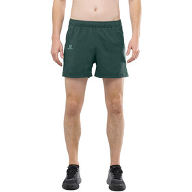 "Salomon Agile Shorts 5"" Herren green gab"